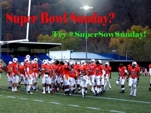 supersowsunday